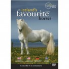Iceland's favourite horses