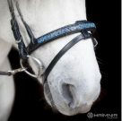 Hrímnir flash noseband Blue Lagoon