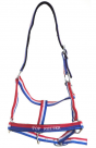 Top Reiter halter and lead rope