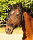 Fly mask elasticated